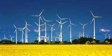 Renewable energy cables